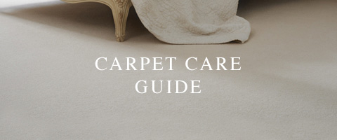 Carpets Care Guide