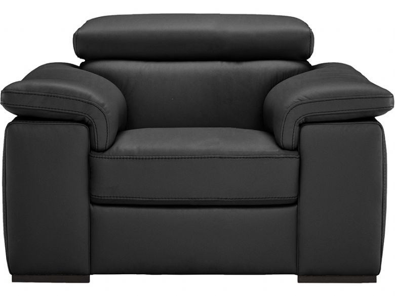 Natuzzi Editions Calin armchair in black leather